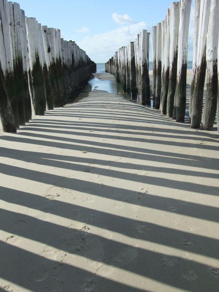 Westenschouwen: strand, zon, zee, duinen, bos (2/5)