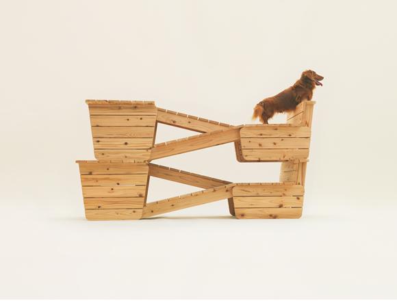 Hondenliefhebbers, verras je hond! (2/2)