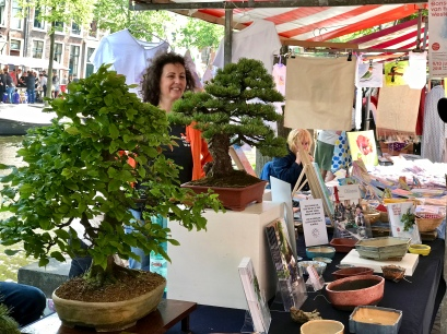 Bonsaiboompjes op de Japanmarkt